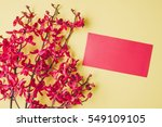 top view accessories chinese... | Shutterstock . vector #549109105