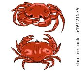 Crab Vector Illustration In...