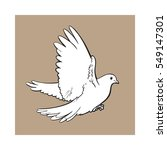 free flying white dove  sketch... | Shutterstock .eps vector #549147301