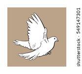 Free Flying White Dove  Sketch...