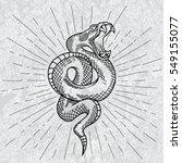 viper snake. hand drawn... | Shutterstock .eps vector #549155077