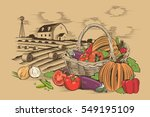 basket of vegetables | Shutterstock . vector #549195109