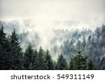 forest mountain with the... | Shutterstock . vector #549311149