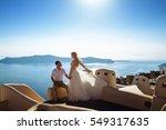 beautiful bride and groom in... | Shutterstock . vector #549317635