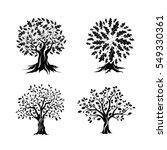 Beautiful Oak Trees Silhouette...