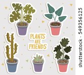 big set of cute cartoon cactus... | Shutterstock .eps vector #549356125