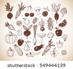 doodle fruits and vegetables in ... | Shutterstock .eps vector #549444139