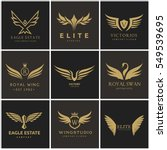bird and wing logo set. eagle... | Shutterstock .eps vector #549539695