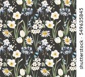 watercolor botanical floral... | Shutterstock . vector #549635845