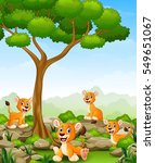 cartoon lioness group in the... | Shutterstock . vector #549651067