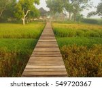 wooden path stands midst rice... | Shutterstock . vector #549720367