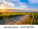 morning sunrise landscape... | Shutterstock . vector #549728794