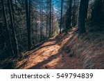 trail up to the france alps | Shutterstock . vector #549794839