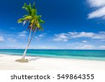 tropical beach with coconut palm | Shutterstock . vector #549864355