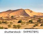 Sand Dunes Of The Sahara Deser...
