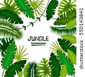 tropical plants. jungle. vector ... | Shutterstock .eps vector #550143841