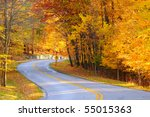 A Curving Autumn Road With A...
