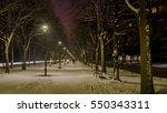 alley | Shutterstock . vector #550343311