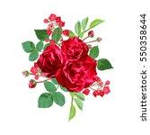 elegant floral bouquet  design... | Shutterstock .eps vector #550358644