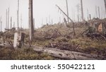 ruined forest  low color and... | Shutterstock . vector #550422121