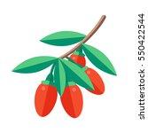 goji berries vector... | Shutterstock .eps vector #550422544