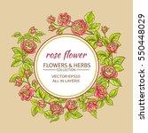 rose flowers vector frame on... | Shutterstock .eps vector #550448029