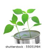 plant   Shutterstock . vector #55051984
