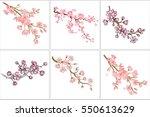 vector illustration. set of... | Shutterstock .eps vector #550613629