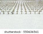 Kreuze Im Schnee