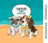 puppies pug and beagle in a... | Shutterstock .eps vector #550638421