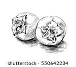 the persimmons hand drawn.... | Shutterstock .eps vector #550642234