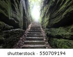 the path to paradise   | Shutterstock . vector #550709194