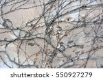 background  texture wall from... | Shutterstock . vector #550927279