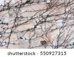 background  texture wall from... | Shutterstock . vector #550927315