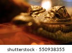 closeup baby crocodile  eyes... | Shutterstock . vector #550938355