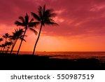 Kona Sunset Against Palm Trees...