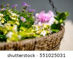 isolated hanging basket shows a ... | Shutterstock . vector #551025031