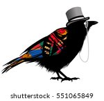 black raven with hat   vector...