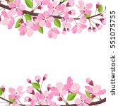 blossoming cherry spring... | Shutterstock .eps vector #551075755