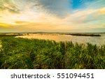 the vast marsh at sunset in the ... | Shutterstock . vector #551094451
