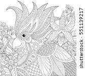 exotic zentangle cockatoo... | Shutterstock .eps vector #551139217