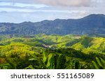 aerial view of the dense...   Shutterstock . vector #551165089