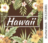 trendy slogan hawaii in the... | Shutterstock .eps vector #551234881