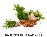 fresh herbs oregano  rosemary ... | Shutterstock . vector #551242741