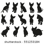 sphynx cat detailed vector... | Shutterstock .eps vector #551253184