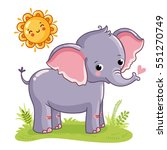 Elephant Stands On The Sunny...