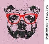 Portrait Of English Bulldog...