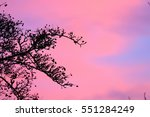 the last berry color explosion... | Shutterstock . vector #551284249