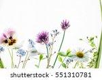 summer flowers | Shutterstock . vector #551310781