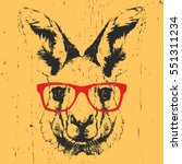 portrait of kangaroo with... | Shutterstock .eps vector #551311234